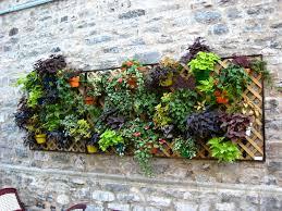 wall garden containers gardening ideas