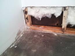 end my nightmare renting d basement floor drywall mold