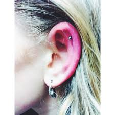 earrings on top of ear top ear cartilage piercings page 9 el capitan piercer