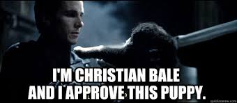 Christian Bale Meme - i m christian bale and i approve this puppy christian bale and
