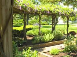 herbal garden geroux herb gardens oh botanical ohio find it here