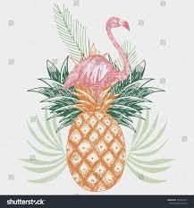 hand drawn pink flamingo on pineapple stock vector 744792331