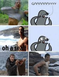 Gay Bear Meme - no one calls bear grylls names owned com