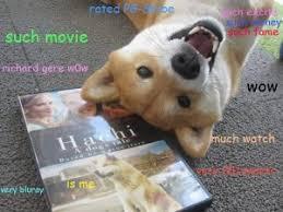 shibe dog memes wow comics and memes