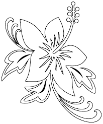 hibiscus flower coloring page free download