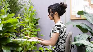 Best Plants For Desk by Bbc Capital Why You Can U0027t Afford To Ignore Nature In The Workplace