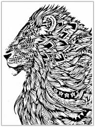 realistic lion coloring pages free realistic coloring pages