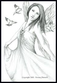 144 fairy grayscale coloring images coloring