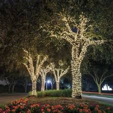 solar powered string lights ora 100 led solar powered outdoor string lights bright white 55