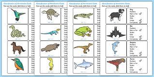 classification of vertebrates cards vertebrates different