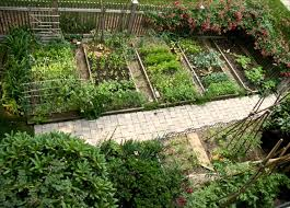 73 best allotment ideas images on pinterest front fence