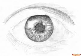 how to draw an eye in pencil step by step eyes people free