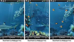live wallpapers android best aquarium and fish live wallpapers for android android authority