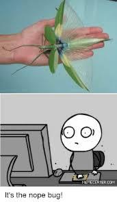 Nope Meme - o o memecentercom it s the nope bug meme on sizzle