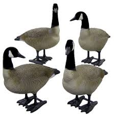your store bigfoot bull canada goose decoys bf114488