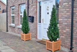 artificial 5ft cedar pine cypress conifer tree the artificial