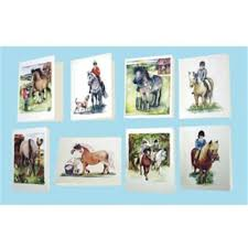 small equestrian cards by herridge 24 pack greg grant