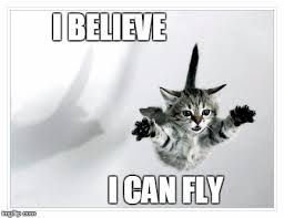 I Believe I Can Fly Meme - falling kitten latest memes imgflip