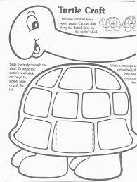 32 best mfw k unit 06 turtle images on pinterest ocean