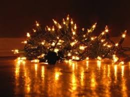 professional christmas lighting services in west palm beach fl