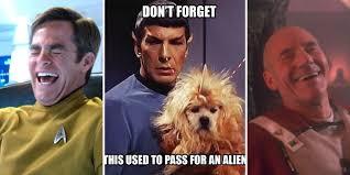 Startrek Meme - 20 hilarious star trek memes that will split your sides
