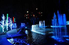 Botanical Gardens Atlanta Lights Botanical Garden Garden Lights Atlanta Ga The