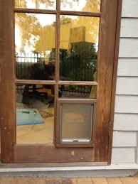 doggy door glass modernization of french door doggie door u2014 prefab homes