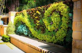 exude a fresh aura in your homes with 20 green living walls home