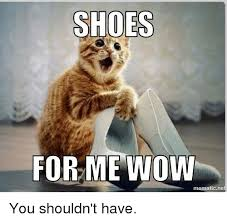 Meme Shoes For Sale - meme cat in shoes sale cat best of the funny meme