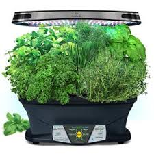 Kitchen Herb Garden Kit Hydroponic Herb Garden Systems And Super Cool Kits
