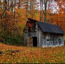 country primitives vintage market home facebook