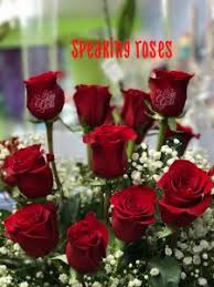 one dozen roses speaking roses one dozen roses with i you printed on the
