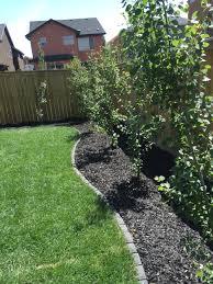 new mulch sod u0026 columnar aspen trees u003d the perfect backyard