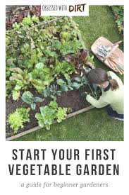 how to start a vegetable garden for beginners vegetable gardening for beginners how to plan your first patch