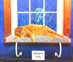 Cat Window Sill Perch Window Mounted Cat Bed With Removable Sheepskin