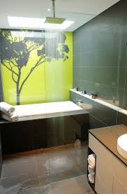 Bathtub Shower Ideas Elegant Pyrex Glass Storage In Bathroom Contemporary With