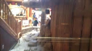 dover hydraulic elevators 2 u0026 3 great wolf lodge wisconsin