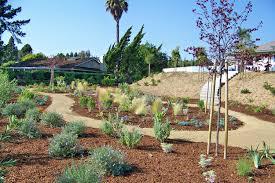 San Diego Landscape by San Diego Landscape Design Job Photo By Steven Letz Letz Design