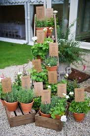 Potted Plants Wedding Centerpieces by Pretty Potted Wedding Centerpieces U0026 Details Mywedding