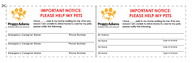 planning for your pet s future getting started peggy