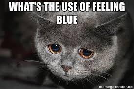 Feeling Sad Meme - what s the use of feeling blue sad cat meme generator