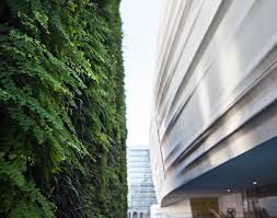 cheap native plants habitat horticulture completes largest indoor living wall in