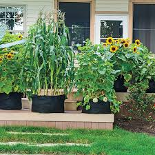 the new treated woods safe for garden use you bet your garden