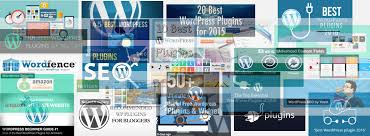 solo build it sbi for wordpress convert wp into the perfect