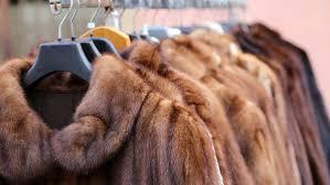 lucy liu xvideo fashion tv new zealand