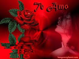 imagenes con frases de amor super tiernas imagenes tiernas de amor con frases romanticas imágenes de amor