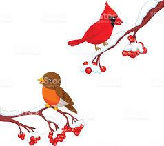 cute cartoon robin bird and cardinal bird on the berry tree stock