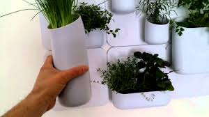 wall mounted herb garden urbio herb garden youtube