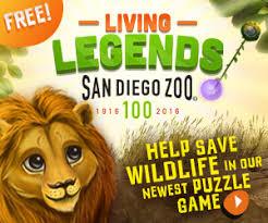 plan your day san diego zoo safari park