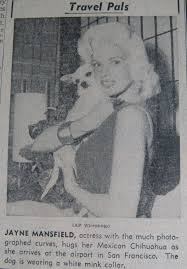 jayne mansfield house jayne mansfield and her house of love a fansite for jayne mansfield
